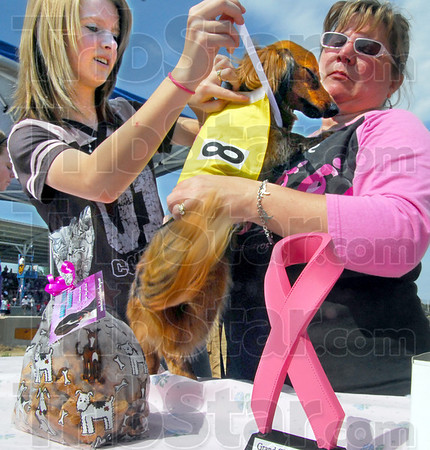 "Race ready: Lindsay and Sally Roetker prepare ""Chopper"" for his heat race during the Dachshund Dash Saturday morning at the Vigo County Fairgrounds."