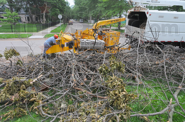 Tribune-Star/Jim Avelis<br /> Branching out: A Terre Haute Parks Department employee shoves storm debris into a chipper at Collett Park Tuesday afternoon. Branches, leaves and tree trunks from hundreds of damaged trees still remain on the ground in the northside neighborhood..