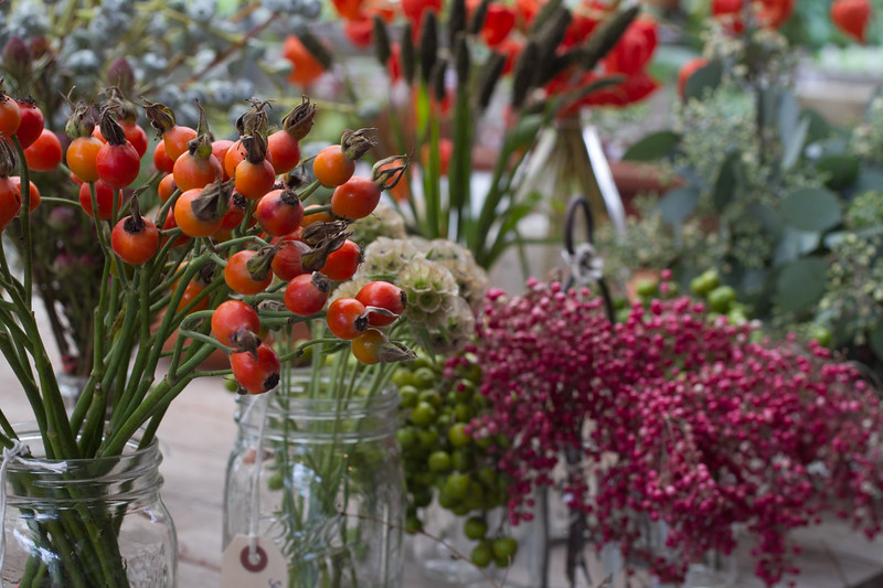 Local Favorite: 1 Flowerland Holiday Gift Making Event with Urban Farmgirls