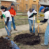 Trees: Mike Emard, Tom Gage, Sarah Conrad and Eddie Peterson work in the 1500 block of south Sixth Street preparing the ground for new trees.