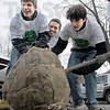 Slow roller: Aaron Joss, Luke Reynolds and Ryan Hohl roll a tree to its final resting spot on Layher Avenue near Vorhees Saturday morning.