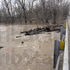 Log jam: Otter Creek is swollen to near the bottom of the bridge along Hasselberger Road in northern Vigo County Monday afternoon causing a log jam because of the high water level.