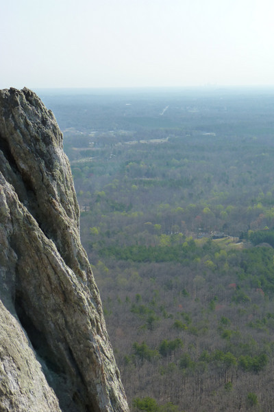 View from Crowder's Mountain