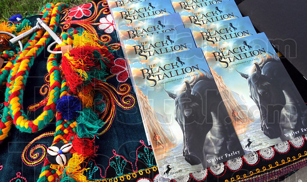 Black Stallion: Detail of book and some decorations for the arabian horses.