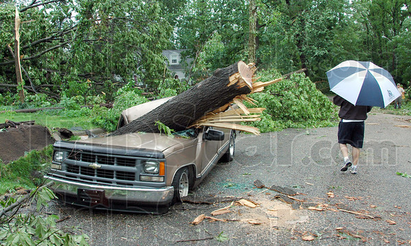 Ouch: A pickup truck sits along the 2600 block of N. 8th Street after being crushed by a falling tree during overnight storms.