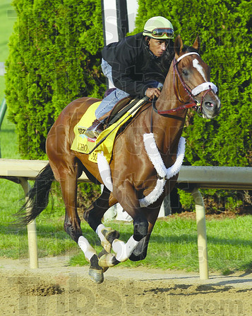 Kentucky Derby hopeful Mucho Macho Man, ridden by jockey Rajiv Maragh, is exercised on the Churchill Downs track in Louisville, Ky., Saturday, April 30, 2011.  (AP Photo/Ed Reinke)