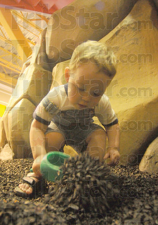 Tribune-Star/Rachel Keyes<br /> Diggin for fossils: Two-year-old Mavrik Tarrants digs for dinosaur fossils at the Terre Haute Children's Museum.