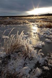 Sunrise Mono Lake.