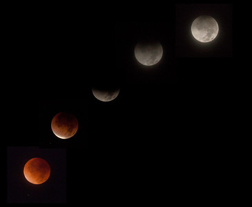 Dec. 10, 2011 -  Total eclipse of the moon. Last one for 2 years.