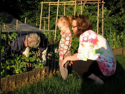 Nana's Garden!
