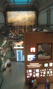 The Smithsonian's National Museum of Natural History (8/21/11)