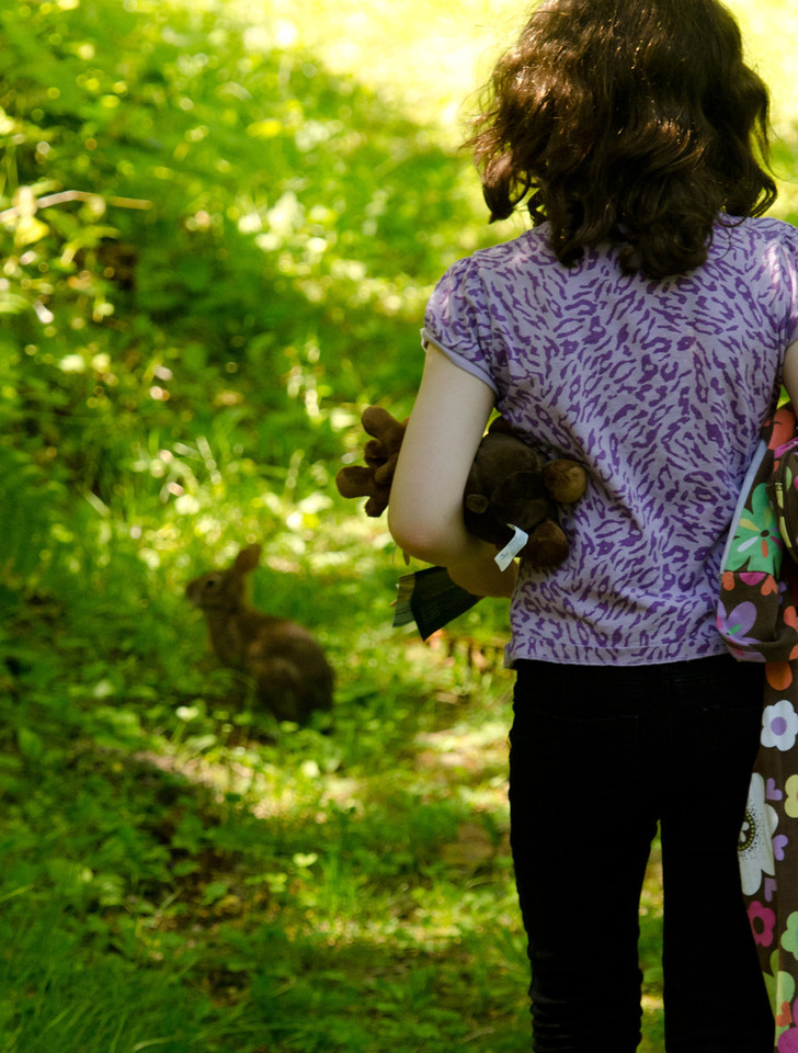 A bunny on the nature trail!