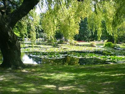 Gardens - William Howarth