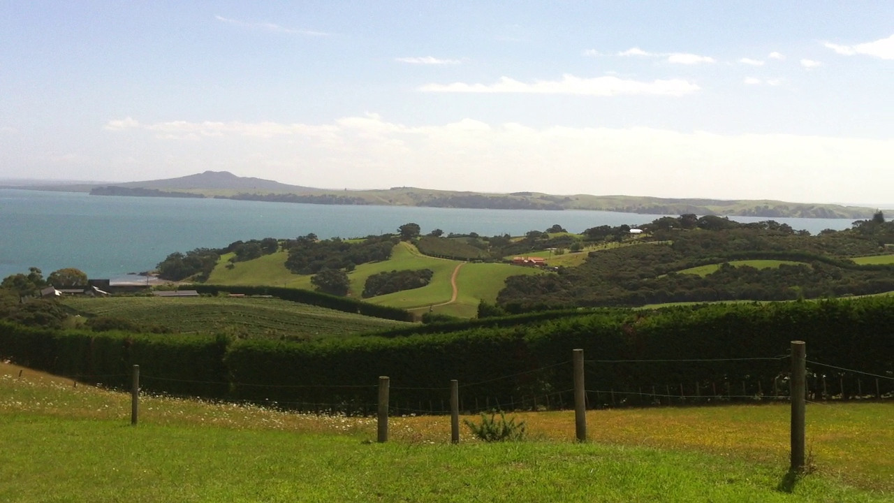 Waiheke landscape