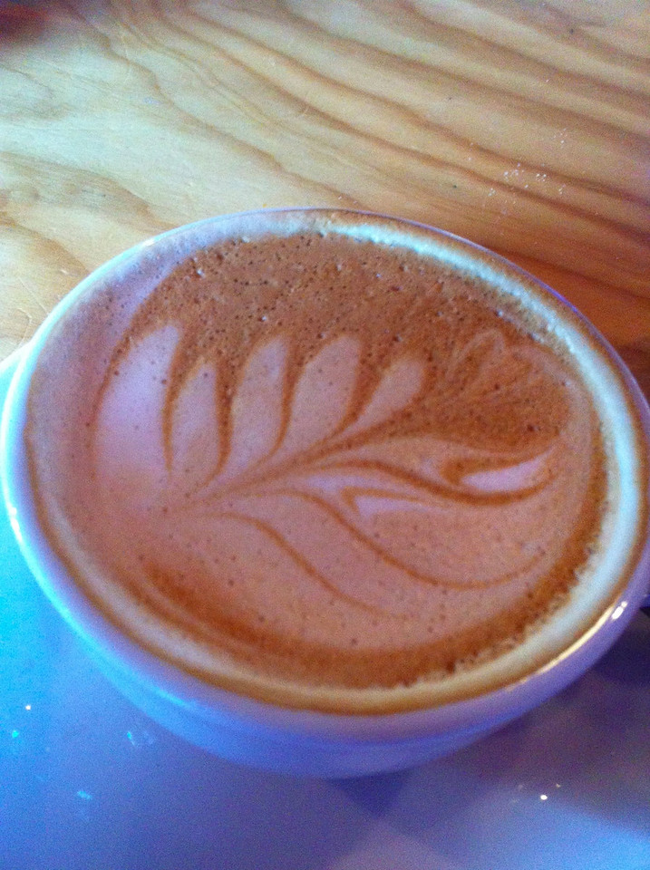 Fern in coffee