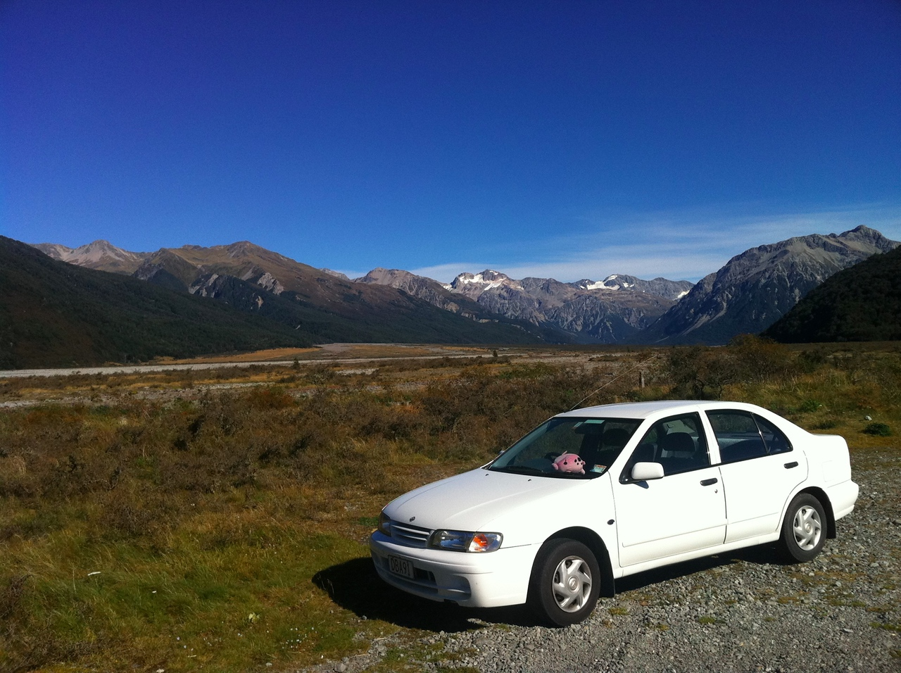 Car and Jumpy near Arthur's Pass