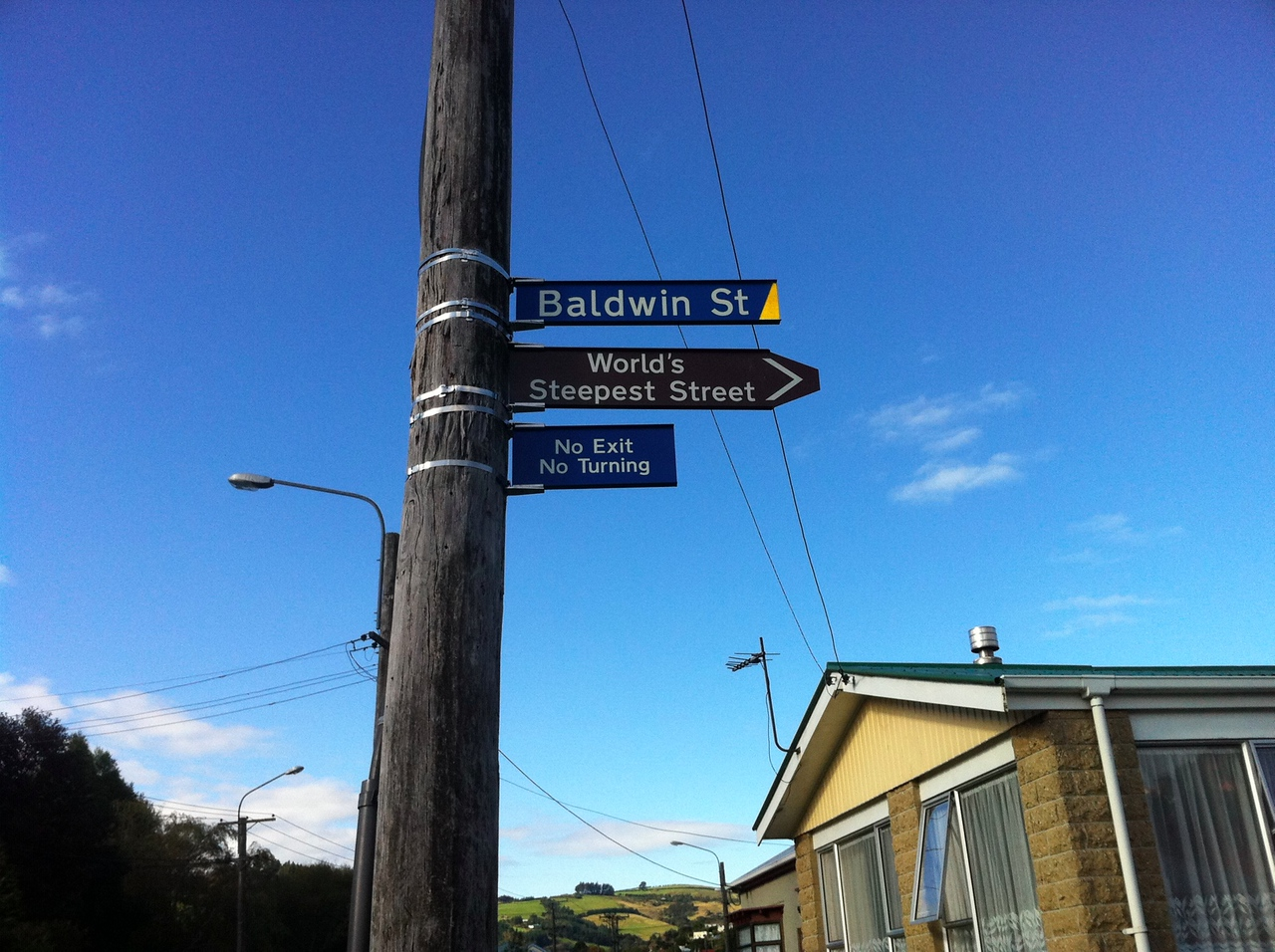 Baldwin Street, the steepest street in the world.