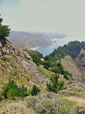 More coast looking the other way from the Muir Overlook