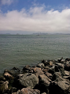Looking across from Sausalito to San Francisco.
