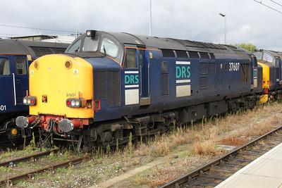 37607 Norwich Station Sidings