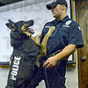 Let's go: Terre Haute police officer Ryan Adamson's dog Caron shows his new vest for media during Tuesday's press conference at Police Headquarters.