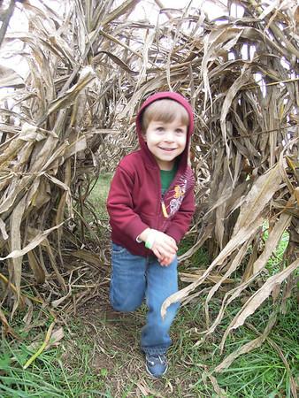 2011 10 Corn Maze