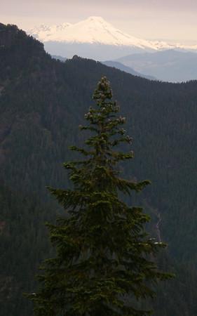 Mt Forgotten - October