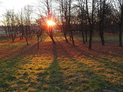 Park Cracow autumn 2011