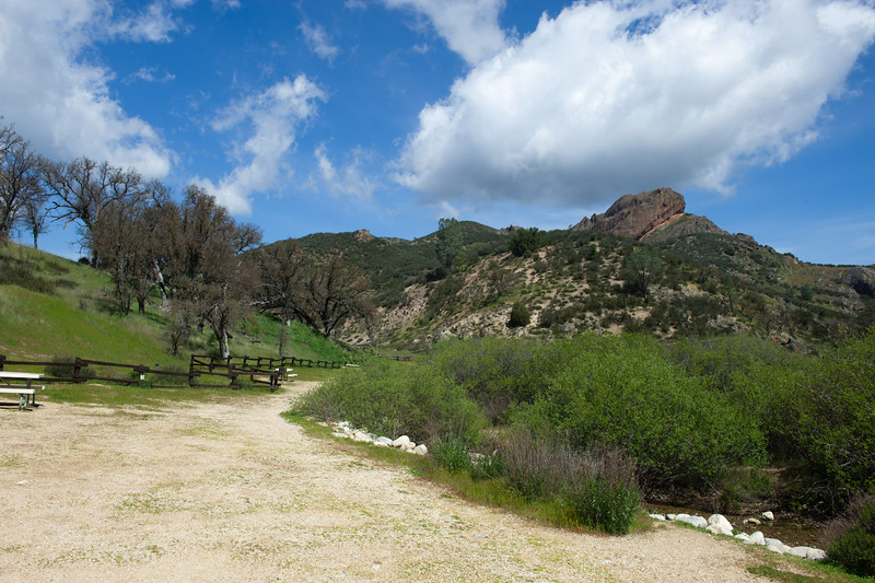 Pinnacles - Chaparral picnic area