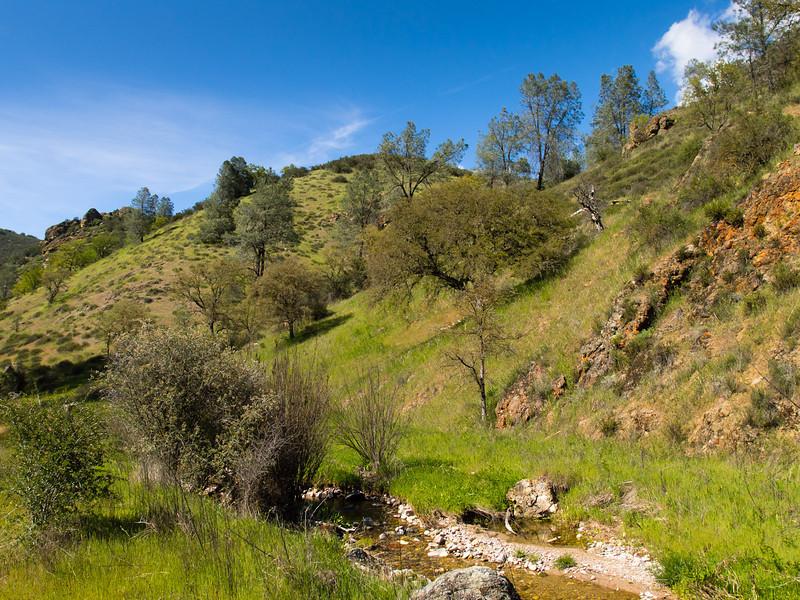 Hillside above Chalone Creek