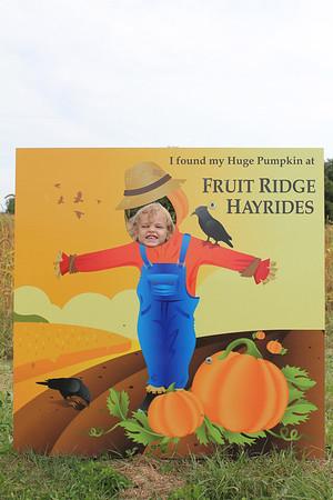 Pumpkin Patch/Corn Maze  9/18/2011