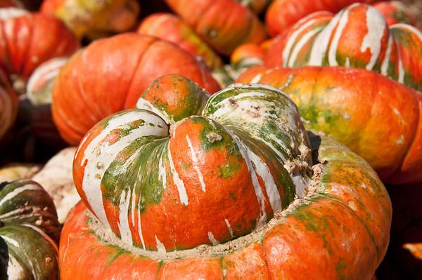 Butt pumpkin