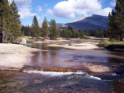 The Tuolumne River in Tuolumne Meadows - it's channel determined by the glacier that flowed here thousands of years ago. Reminds me that we all have a history that helped shape us.