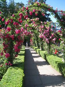 Butchard Gardens, Vancouver Island