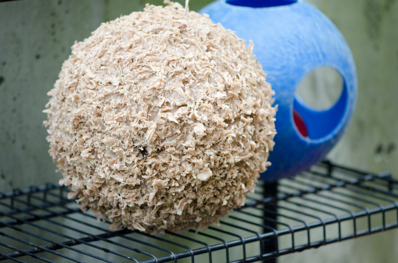 "The furry ball isn't actually furry.  It's about 18"" in diameter and made of hard plastic - like the stuff a plastic kayak is made of?  The fur effect was created by teeth and claws playing..."