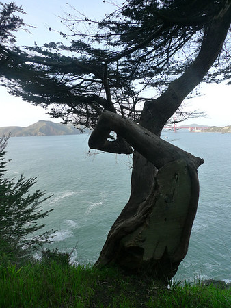 China Beach/Land's End