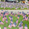 Tribune-Star/Jim Avelis<br /> In memory: Thousands of small American flags were set out in the grass strips in front of Baesler's market in commemoration of those who lost their lives on 9/11.