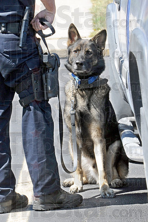 "Found it: State Police K-9 ""Jaxx"" alerts his handler, Trooper Matt Wilson on a vehicle in the parking lot of South Vermillion High School."