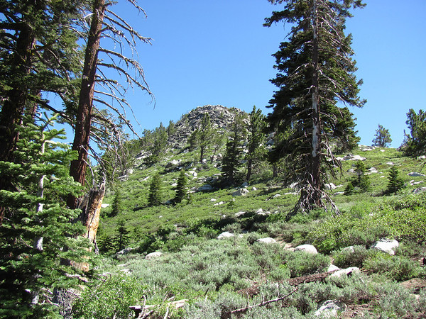 SNOW VALLEY PEAK: JULY 10, 2011