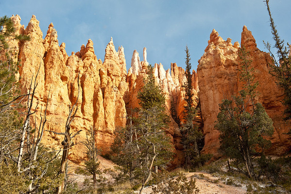 The top of some of the hoodoo's from down below