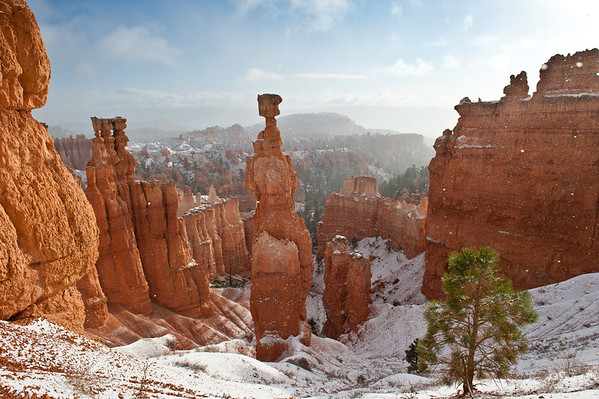 Snow on the Thor's Hammer at Bryce National Park