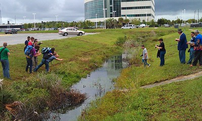 Tweeps (including @darthgeek @lartist @Astroholic007) spot one of the Kennedy Space Center's many alligators
