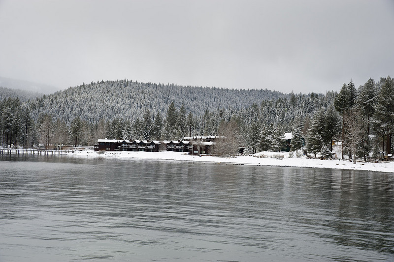 Snow by the shore