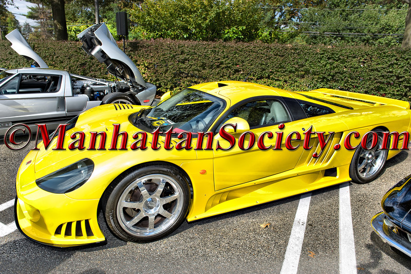 The 7th Annual Americana Manhasset Concours d'Elegance 2011
