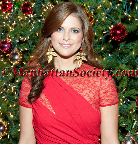 The American Scandinavian Society of New York Christmas Ball 2011 Honoring World Childhood Foundation