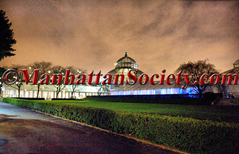 The New York Botanical Garden Winter Wonderland Ball 2011