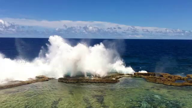 Blowholes the Movie
