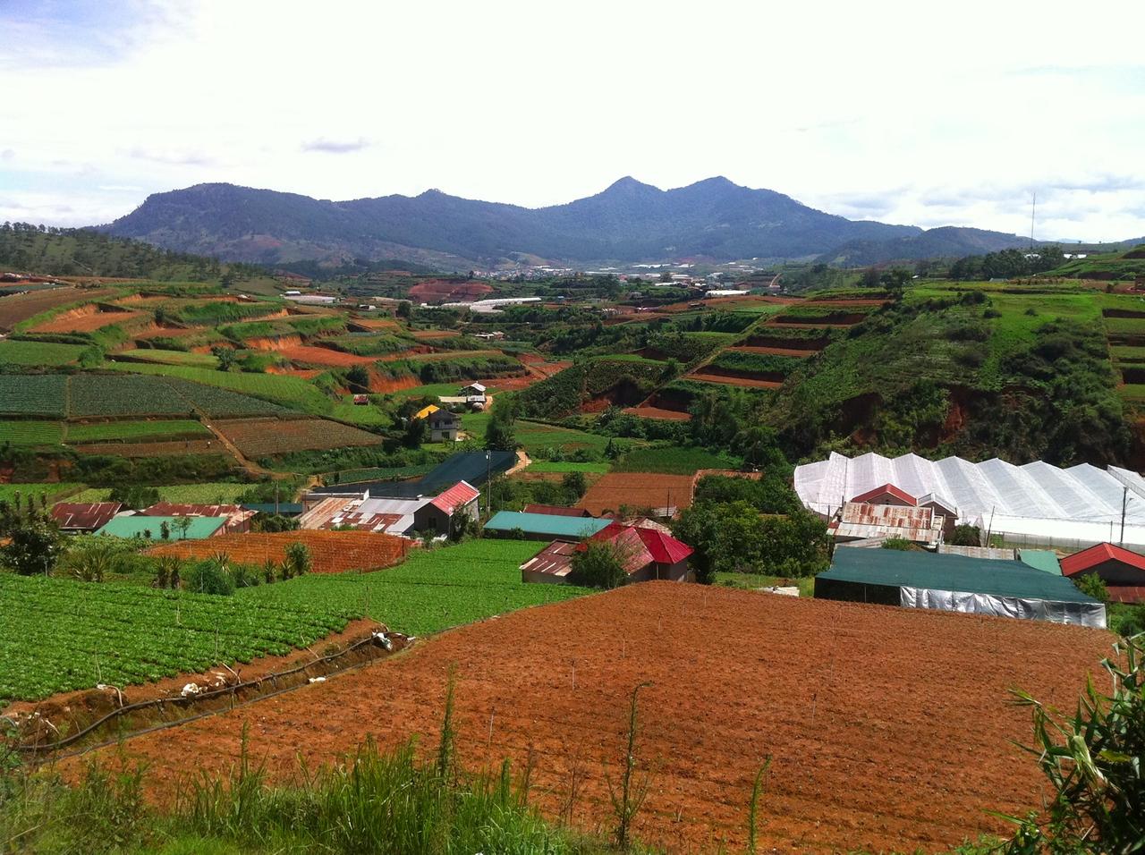 Farming near Dalat