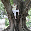 The coolest tree ever!!
