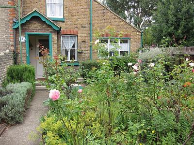Neighbor's cute garden